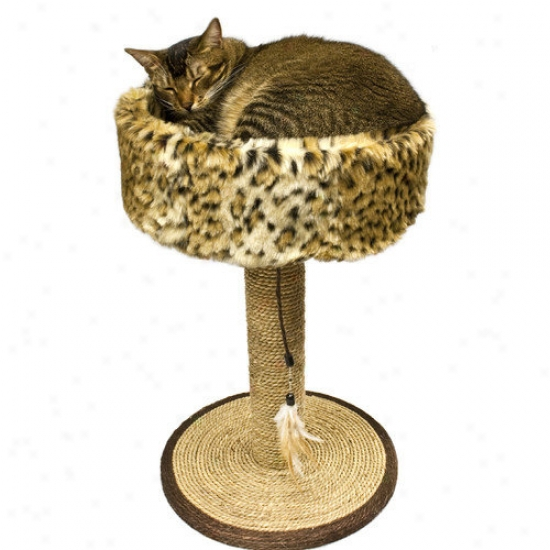 Ware Mfg Wild Sisal Cat Scratch And Sleep
