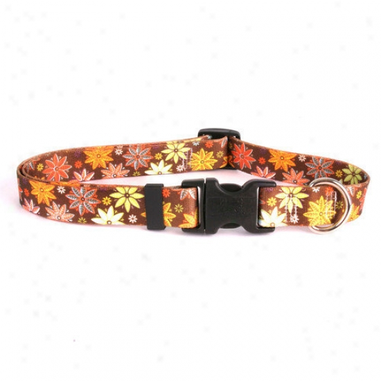 Golden Dog Design Autumn Flowers Standard Collar