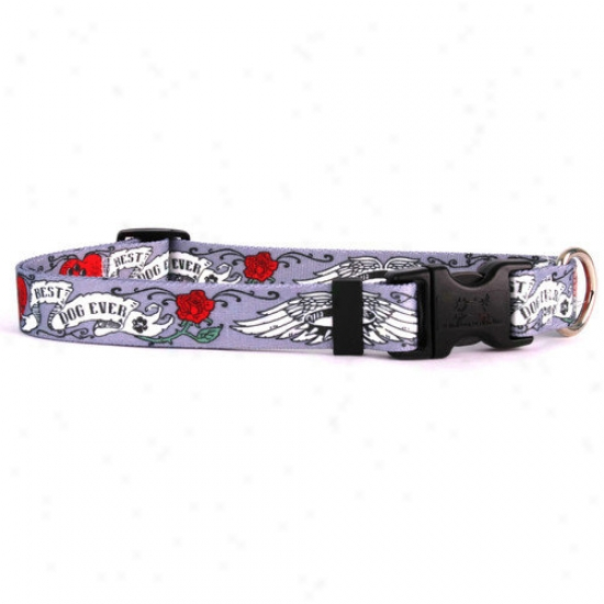 Yellow Dog Design Best Dog Ever Standard Collar