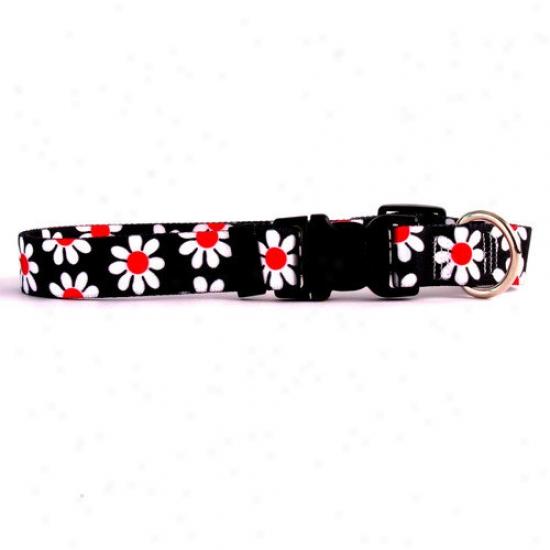 Yellow Dog Design Black Daisy Standard Collar