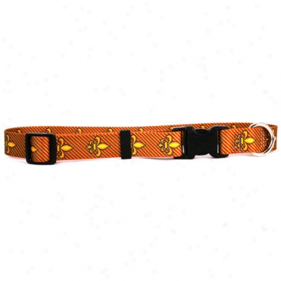 Yellow Dog Design Fleur De Lis Standard Collar