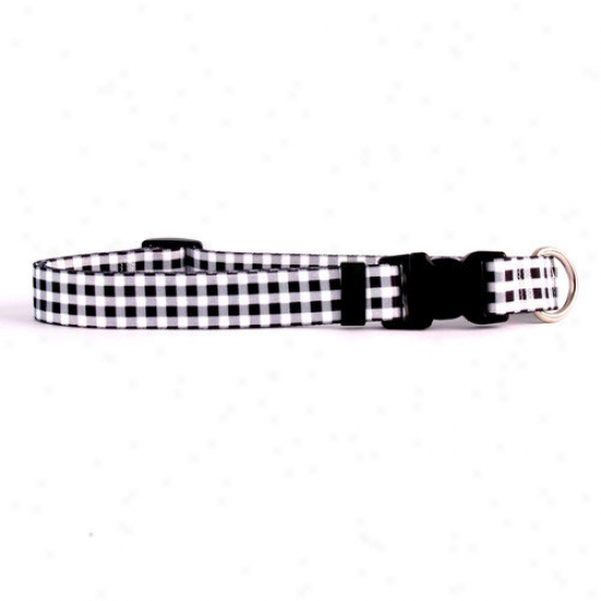 Yellow Dog Desig Gingham Standard Collar