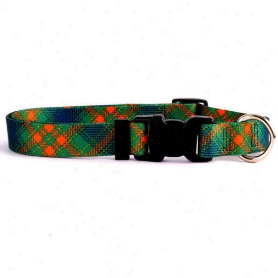 Yellow Dog Design Green Kilt Criterion Collar