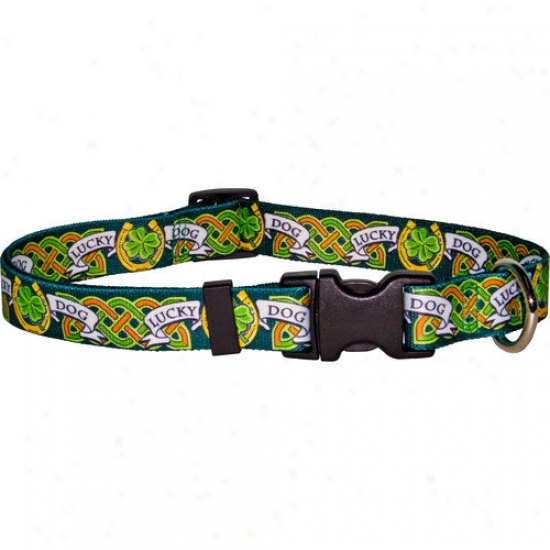 Yellow Dog Design Lucky Dog Standard Collar
