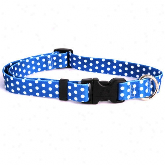 Yellow Dog Design Polka Dot Standard Collar