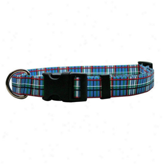 Golden Dog Design Tartan Standard Collar