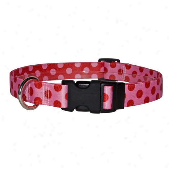 Yellow Dog Design Valentine Polka Dot Standard Collar