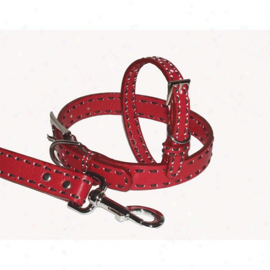 A Pet's World Saddle Stitch 4' Leather Leash
