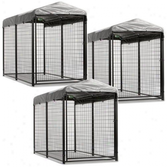 Akc 4 X 8X  6 Ft. Pro Breeder Dog Kennels With Cover & Frame - 3 Units
