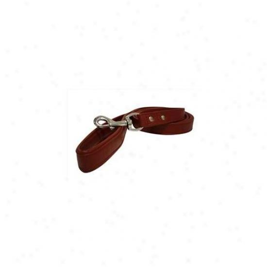 Angel Pet Supplies 40023 Alpine Leash In Valentine Red