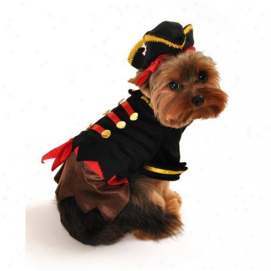 Anit Accessories Pirate Pirate Dog Costume