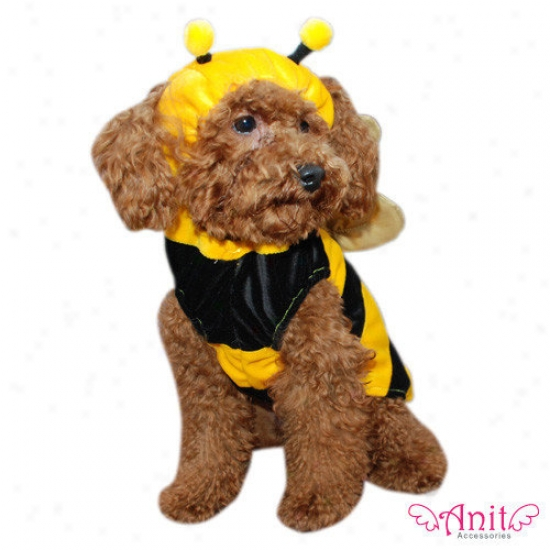 Anit Accessories Bumble Bee Dog Costume