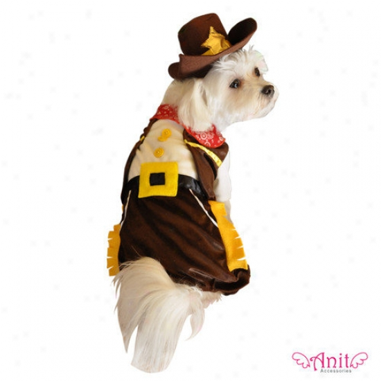 Anit Accessories Cowboy Dog Costume