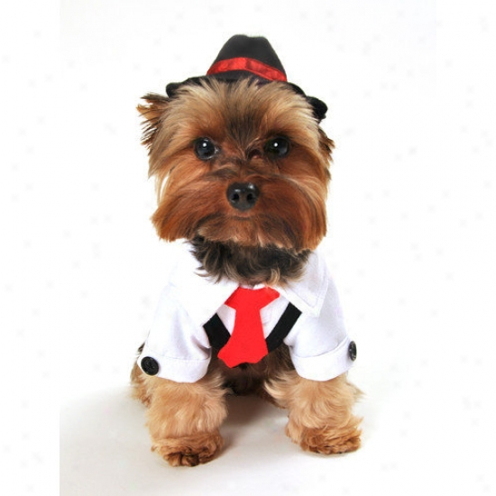 Anit Accessories Gangster Dog Costume