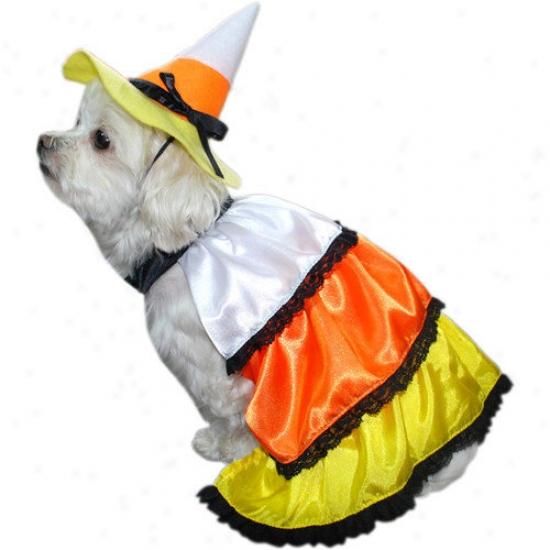Anit Accessories Kandy Korn Dog Costume