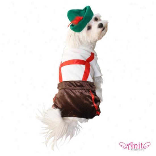 Anit Accessories Leederhosen Dog Costume