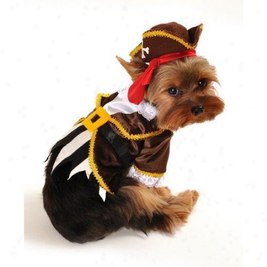 Anit Accessories Pirate Captain Dog Costume