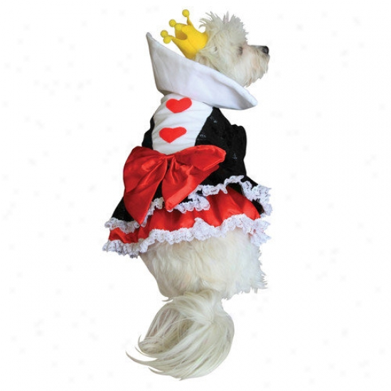 Anit Accessories Queen Of Hearts Dog Costume