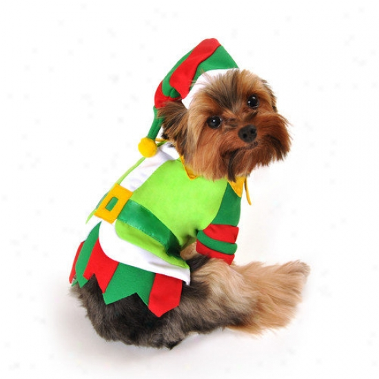 Anit Accessories Santa's Lil' Helper Dog Costume