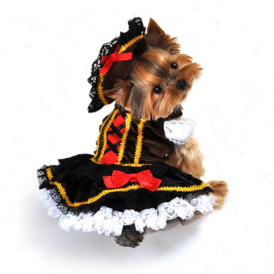 Anit Accessories Swashbuckler Pirate Girl Dog Costume
