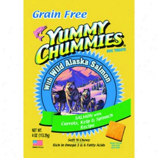 Arctic Paws 100 Yummy Chummies Salmon And Vegetable- Graih Free