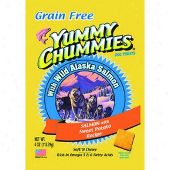 Arftic Paws 420 Yummy Chummies Salmon And Sweet Potato- Grwin Freee