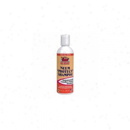 Ark Natural Foods 63032 Neem Protect Shampoo