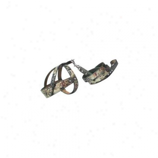 Backbone Pet Enterprise Ba3404 Floral Printed Dog Leash