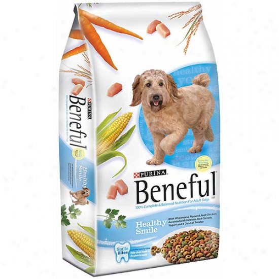 Beneful Dry Healthy Smile Dog Food, 3.3 Lbs