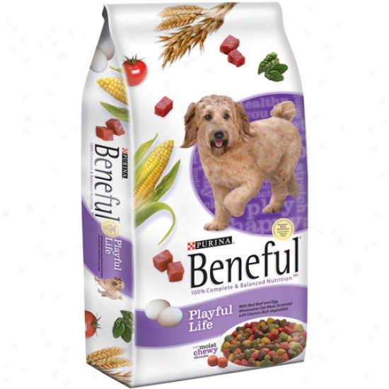 Beneful Dry Playful Life Dog Food, 31.1 Lbs