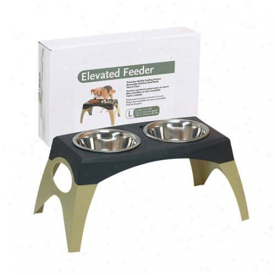 Bergan Pet Products Stormcloud Elevated Feeder