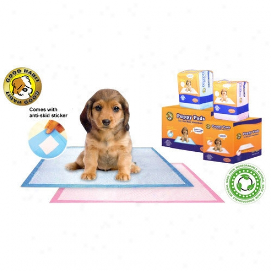 Best Pet Supplies Puppy Pad (100 Pieces)