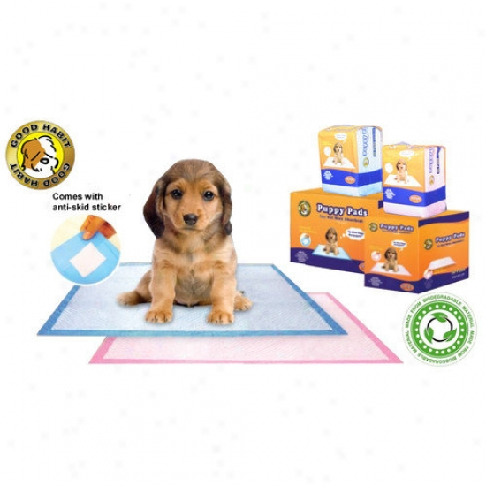 Best Pet Supplies Puppy Pad (30 Pieces)