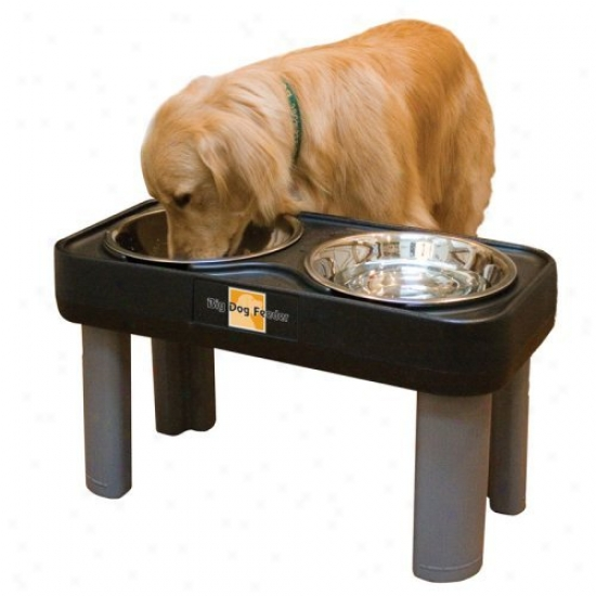 Big Dog Double Bowl Feeder - 16 In. Mourning