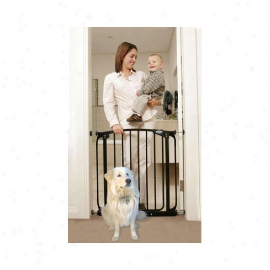 Bundle-19 Bindaboo Black Swihg Closed Fondle Gate (set Of 2)