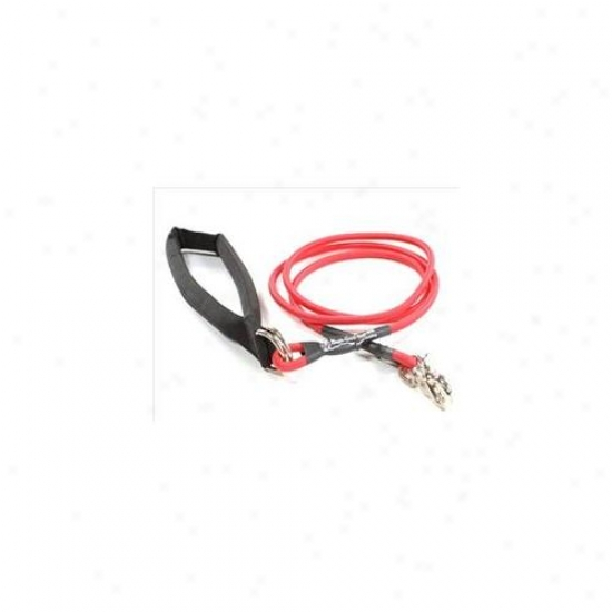 Bungee Pupee Bp103 Small Up To 25 Lbs - Red 6 Ft.  Leash