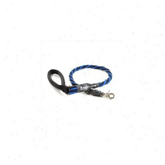 Bungee Pupee Bq401l X-large Up To 165 Lbs - Blue And Black 3 Ft.  Leash