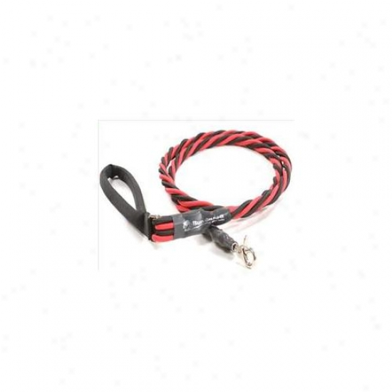 Bungee Pupee Bq403 X-large Up To 165 Lbs - Red And Black 6 Ft.  Leash