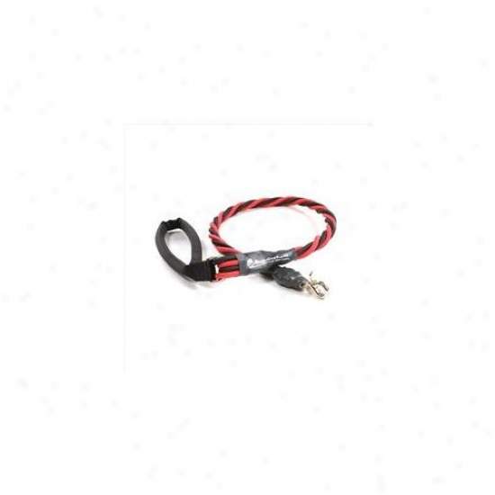 Bungee Pupee Bq403l X-large Up To 16 Lbs - Red And Black 3 Ft.  Leash