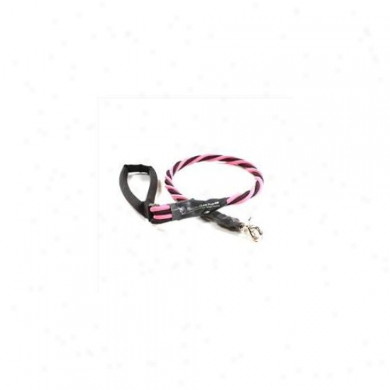 Bungee Pupee Bq404l X-large Up To 165 Lbs - Pink And Black 3 Ft.  Leash