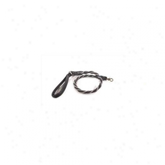 Bungee Pupee Bq406l X-large Up To 165 Lbs - Grey And Black 3 Ft.  Leash