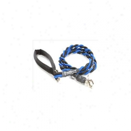 Bungee Pupee Bt201 Medium Up To 45 Lbs - Blue And Black 6 Ft.  Leash