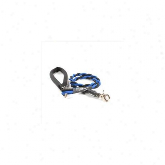 Bungee Pupee Bt201l Medium Up To 45 Lbs - Blue And Black 3 Ft.  Leash