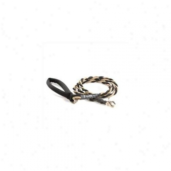 Bungee Pupee Bt202 Medium Up To 45 Lbs - Gold And Black 6 Ft.  Leash