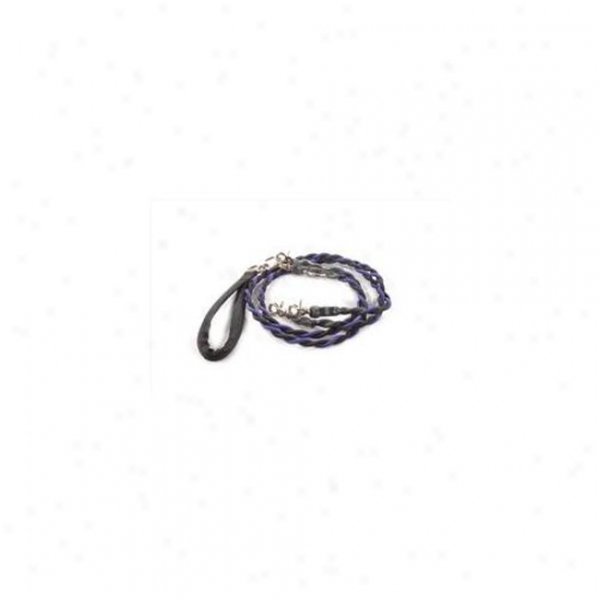 Bungee Pupee Bt205d Double Medium Up To 45 Lbs - Purple And Bpack 4 Ft.  Leash