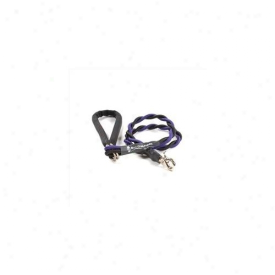 Bungee Pupee Bt205l Medium Up To 45 Lbs - Purple And Black 3 Ft.  Leash