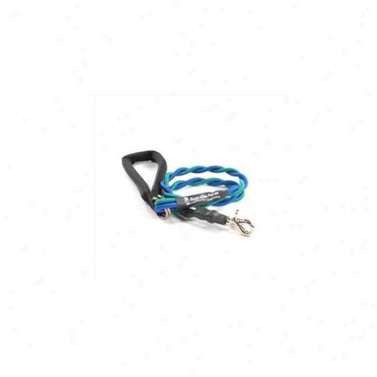 Bungee Pupee Bt207l Medium Up To 45 Lbs - Tea1 And Blue 3 Ft.  Leash