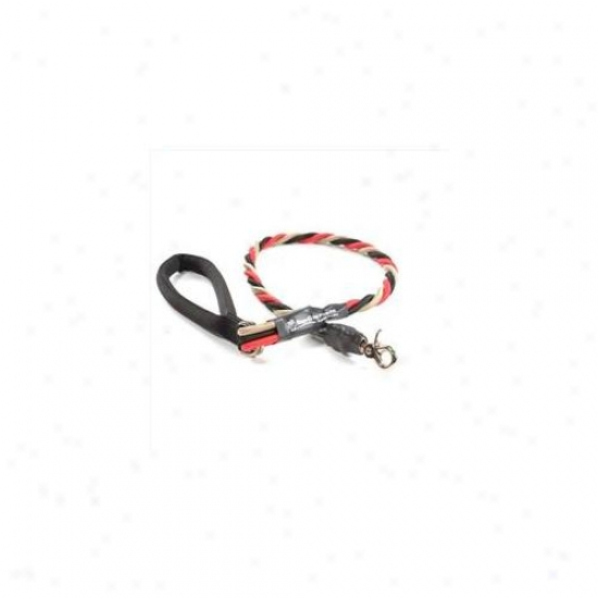 Bungee Pupee Tt303l Large Up To 65 Lbs - Red And Bkack And Gold 3 Ft.  Leash