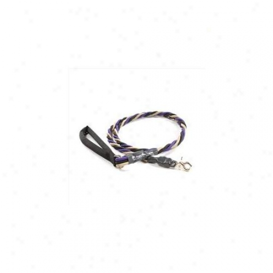 Bungee Pupee Tr305 Large Up To 65 Lbs - Purple And Black And Gold 6 Ft.  Leash