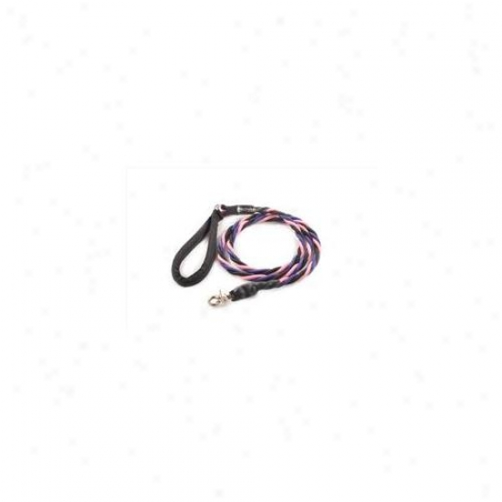 Bungee Pupee Tt306 Large Up To 65 Lbs - Pink And Black And Purple 6 Ft.  Leash